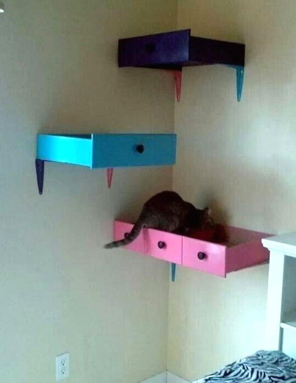 Drawer Cat Shelf Petdiys