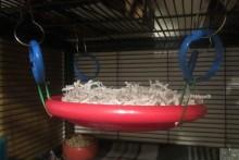 DIY-Frisbee-Hammock