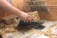 DIY-Newspaper-Bedding-Cleaning
