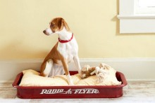 DIY-Wagon-Dog-Bed