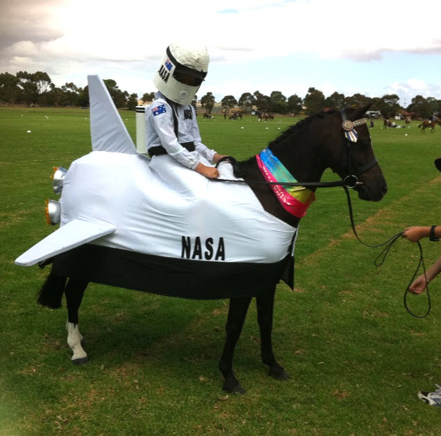 Types clothes diy horse space shuttle costume dress your horse as a