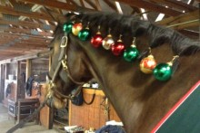 DIY-Christmas-Ornament-Horse-Mane