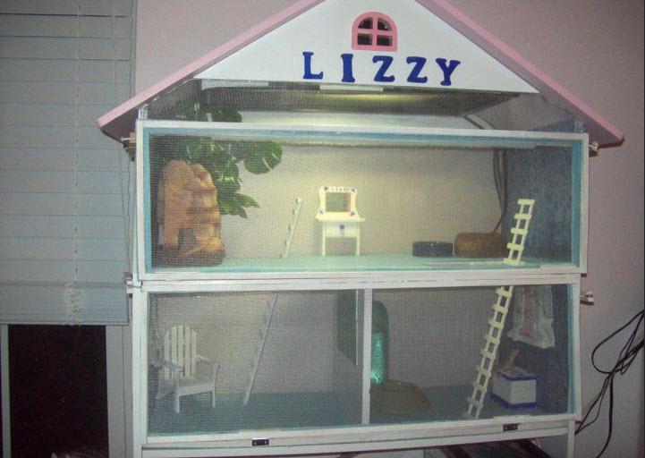 Diy Dollhouse Lizard Cage Petdiys Com