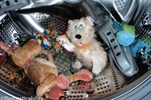 DIY-Plush-Dog-Toy-Wash