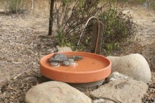 DIY-Solar-Powered-Fountain-Birdbath