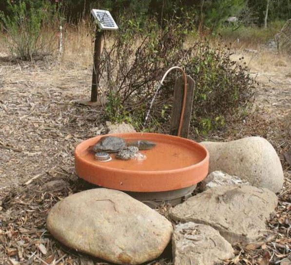 DIY Solar Powered Fountain Birdbath