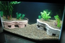DIY-Aquarium-Stone-Terrace-Cave