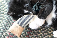 DIY-Catnip-Christmas-Stocking-Toy