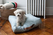 DIY-Dog-Cushion-Bed