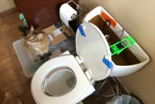 DIY-Automatic-Cat-Toilet-Flusher