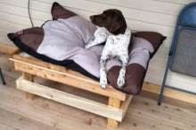 Pallet-Raised-Dog-Bed