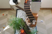 DIY-Cat-Island