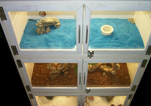 Armoire Reptile Cages Petdiys Com