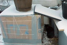 Box-Outdoor-Cat-Shelter