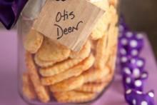 Cheese-Dog-Treat-Cookies