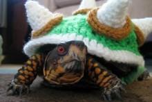 Crochet-Turtle-Bowser-Costume