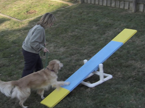 How To Make A Dog Agility Course At Home