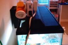 DIY-Automatic-Fish-Feeder