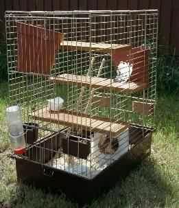 Diy Bird Cage Rat Modifications Petdiys Com