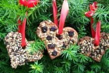 DIY-Bird-Treat-Ornaments