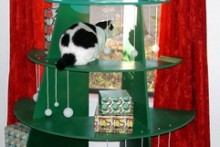 DIY-Cat-Climbable-Christmas-Tree1