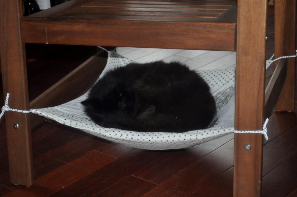 Diy Cat Chair Hammock Petdiys Com