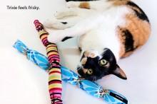 DIY-Cattail-Catnip-Cat-Toy