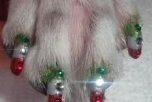 DIY-Christmas-Dog-Nail-Art