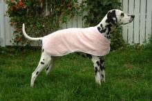 DIY-Dog-Cooling-Coat