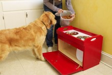 DIY-Dog-Food-Station