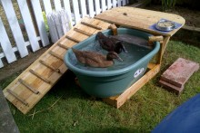 DIY-Duck-Pool-Deck
