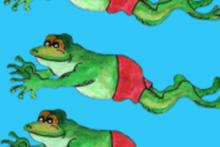 DIY-Frog-Shed-Bath1