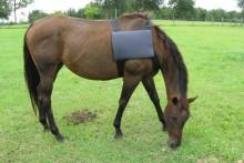 DIY-Horse-Ice-Pack-Vest