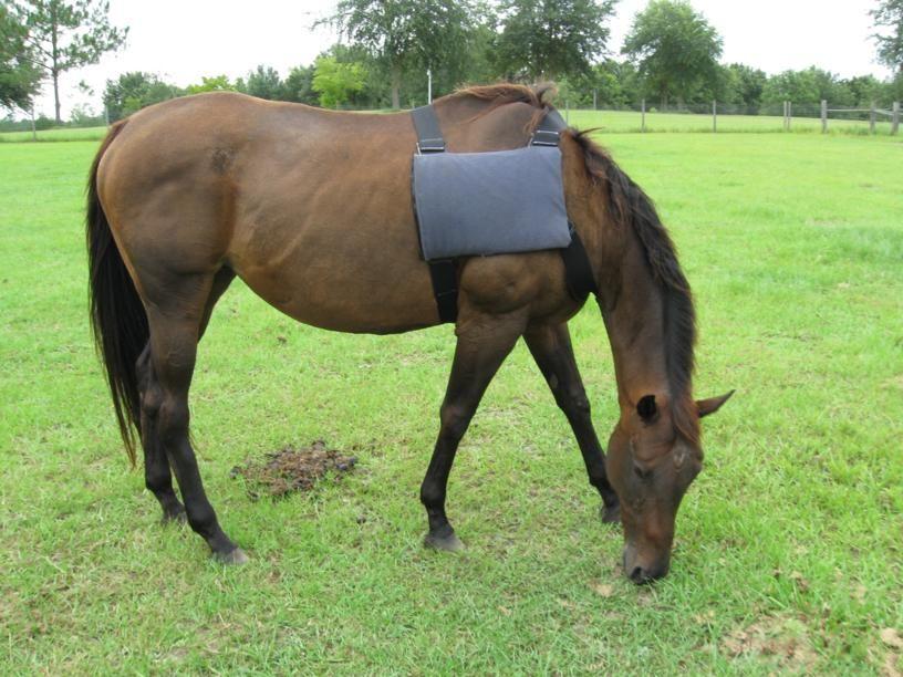 DIY Horse Ice Pack Vest