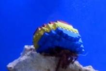 DIY-Lego-Hermit-Crab-Shell1