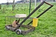 DIY-Rabbit-Lawnmower-Cage