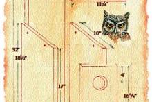 DIY-Screech-Owl-Nest-Box
