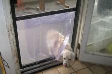 DIY-Screen-Door-Dog-Door