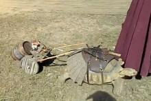DIY-Turtle-Cart