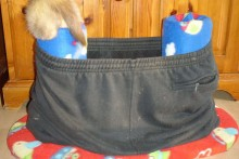 DIy-Ferret-Pants-Condo