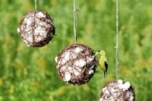 Grapevine-Ball-Nest-Material-Dispenser