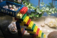 Lego-Hermit-Crab-Stairs