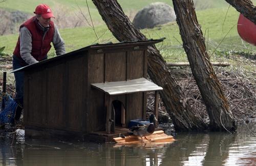 PVC Floating Duck House - petdiys.com