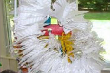 Paper-Plate-Parrot-Toy