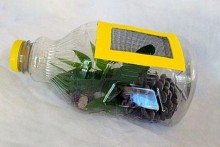 Plastic-Bottle-Bug-Catcher