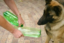 Plastic-Bottle-Travel-Water-Bowl