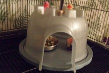Sandcastle-Bucket-Sugar-Glider-Kitchen