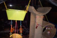 Tent-Sugar-Glider-Playground