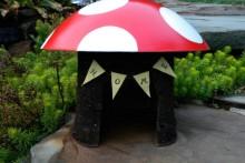DIY Mushroom Toad House