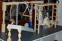 DIY-Spindle-Rat-Playground